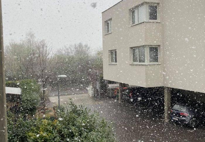 Сніг у квітні або капризи віденської весни.